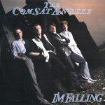 1985_The_Comsat_Angels_I'm_Falling