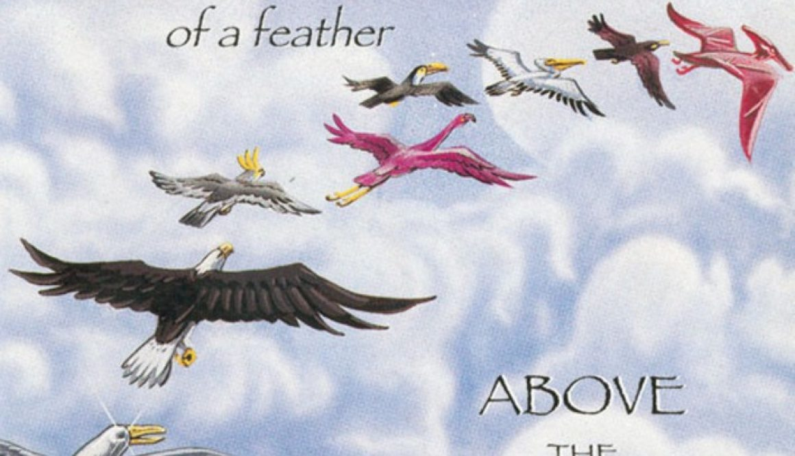 Bird Of A Feather 1994