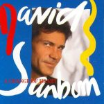 1987 David Sanborn - A Change Of Heart