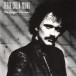 1982 Jesse Colin Young - The Perfect Stranger
